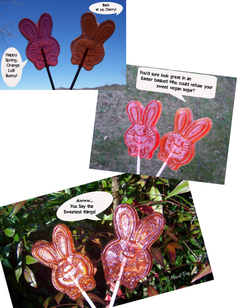 Vegan Lollipops